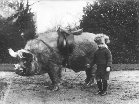 Funny-Old-Pictures-of-Cute-Kids-with-Their-lovely-Pets-10